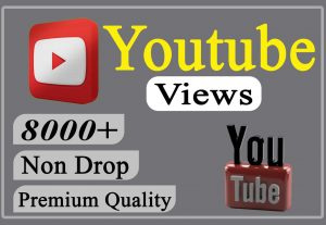I will provide you 8000+ YouTube Video Views Non-drop and Lifetime.