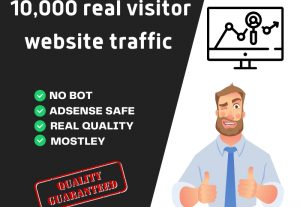 I will provide real visitors to your website