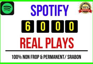 Add Instant 6000+ Spotify Real Plays, 100% real, Non-drop and Lifetime Permanent