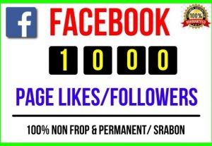 Get Instant 1000+ Facebook Page Likes / Followers, 100% real, Non-drop and Lifetime Permanent