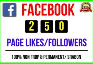 Get Instant 250+ Facebook Page Likes / Followers, 100% real, Non-drop and Lifetime Permanent