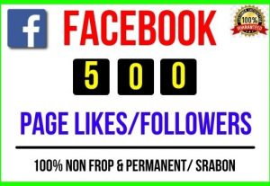 Get Instant 500+ Facebook Page Likes / Followers, 100% real, Non-drop and Lifetime Permanent