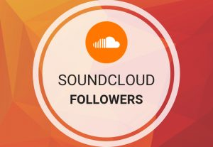 Grow 1000+ Soundcloud followers to rocket SEO