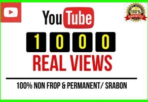 Get 1000+ Youtube High Retention USA Audience Views, Non-drop and Permanent