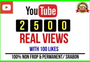 Get 2500+ Youtube High Retention Audience Views and 100 Likes Non-drop and Permanent
