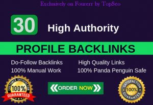 High Quality Top Ranker 30 PR9-7 Profile Backlinks permanent seo  service 2021