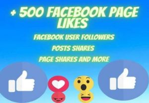 Add you Fast Facebook Page/Post/User +1000 Likes or Followers high-quality YOUR NICHE TARGETED USERS Real organic Non-drop guaranteed for life