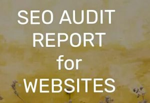 I will review your website and provide a Full SEO Audit Report.