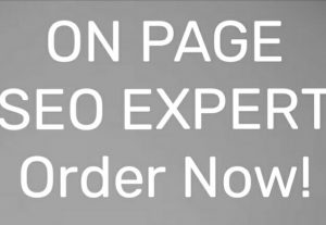 I will do On Page SEO for your website.