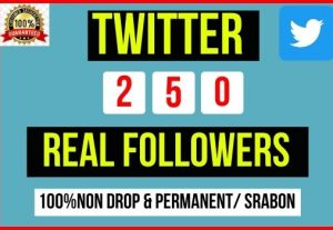 Get Instant 250+ Twitter Followers, 100% real, Non-drop and Lifetime Permanent