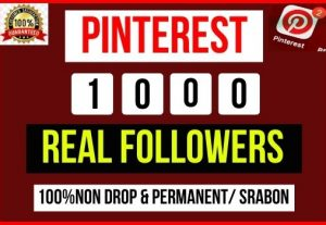Get Instant 1000+ Pinterest Followers, 100% real, Non-drop and Lifetime Permanent
