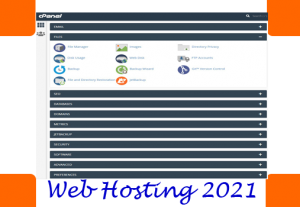 cPanel 10GB web hosting for 1 year – bonus WordPress installation – within 24 hour