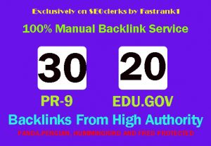 Skyrocket your google ranking high quality top ranker 30 pr9 + 20 edu/gov profile backlink DA 80 + PR9-7