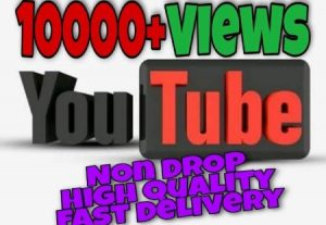 I will add 10000+ Views on YouTube post . High Quality.