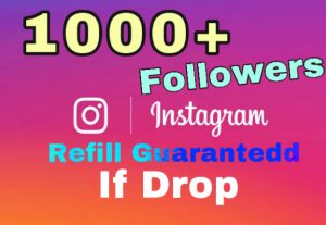 I will add 1000+ Followers on Instagram. 30 days refill guaranteed if any drop.