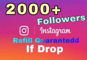 I will add 2000+ Followers on Instagram . 30 days refill guaranteed if drop.