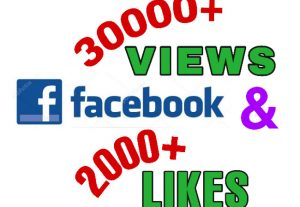 I will add 30000+ Views & 2000+ likes on Facebook video post . Non Drop!