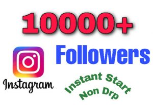 I will add 10000+ Followers on your Instagram Profile. Instant start and non drop!