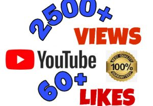I will add 2500+ Views & 60+ Likes on YouTube post. High Quality.