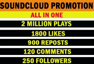 2 million soundcloud plays with 1800 likes, 900 reposts, 120 comments, 250 followers