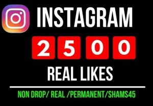 Get Instant 2500+ Instagram Post Likes, all are Non-drop, real, and a lifetime permanent