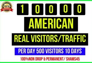 Get 10,000+ American Web Traffic, Per day 500 traffic -20 days