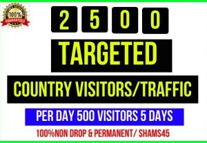 Get 2500+ Targeted Country Web Traffic, Per day 500 traffic -5 days