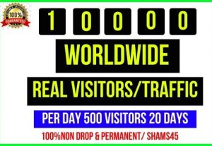 Get 10,000+ Worldwide Web Traffic, Per day 500 traffic -20 days