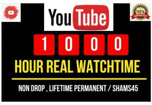 Add 1000+Hours YouTube Real Watch time , Real and high Retention, Non-drop and Permanent