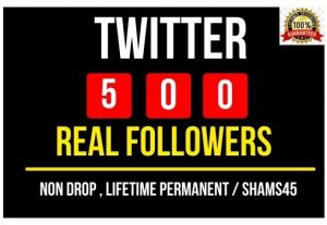 Provide 500+ twitter Real followers , all are 100% Non drop real and permanent