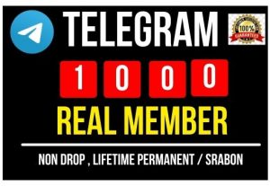 Get Instant 1000+ Telegram Real Member, 100% Non-drop, Real and Lifetime permanent