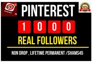 I Will Provide 1000+ Pinterest Real Followers , all are Non drop and lifetime permanent