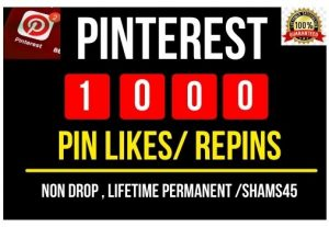 I Will Provide 1000+ Pinterest Pin likes/ Re Pins , all are Non drop and lifetime permanent
