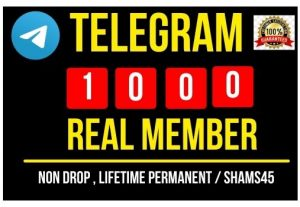 I will provide 2000+ Telegram public channel member Instant , Real, Non drop and permanent