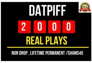 I will provide 2000+ Datpiff Plays , all are real and non drop plays