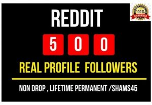 Get Instant Reddit 500 profile followers