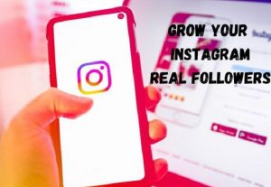 I will provide instant high quality 2000+ Instagram followers