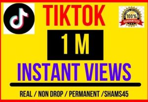 I will give 1M + TikTok Video Views , Instant start , Non drop and Lifetime permanent