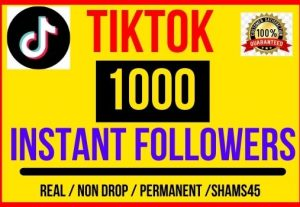 I will give 1000 + TikTok Real followers, Instant start , Non drop and Lifetime permanent