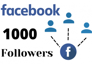 Get 1000 facebook page followers – Non-drop – Fast delivery- HQ