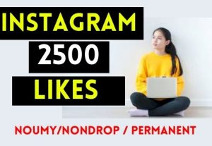 GET 2500+ INSTAGRAM LIKES , REAL AND NON DROP