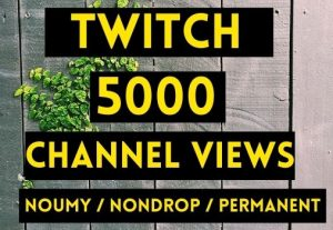 GET 5000+ TWITCH CHANNEL VIEWS INSTANT AND NON DROP