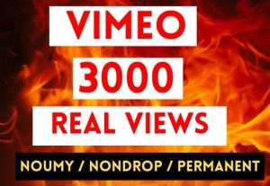 GET 3000+ VIMEO VIEWS INSTANT AND NON DROP