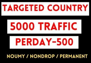 GET TARGETED COUNTRY 5000+ WEB TRAFFIC ,PERDAY 500 TRAFFIC , 10 DAYS