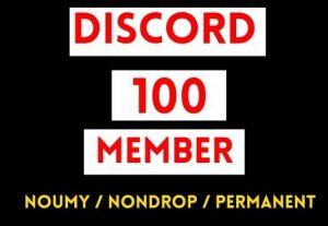 GET 100+ DISCORD MEMBER INSTANT AND NON DROP