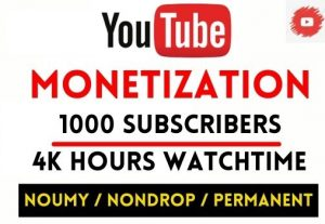 GET 1000+ SUBSCRIBERS AND 3000 HOURS WATCHTIME , FULL MONETIZATION PACKAGE( EXTRA 1K HOURS ORDE)