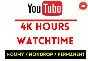 GET 4000+ HOURS YOUTUBE WATCHTIME , NON DROP AND PERMANENT