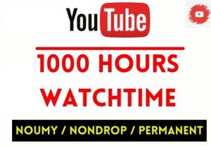 GET 1000+ HOURS YOUTUBE WATCHTIME , NON DROP AND PERMANENT