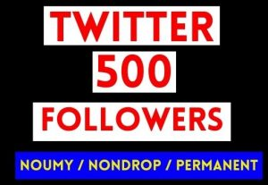 GET 500+ TWITTER FOLLOWERS , NON DROP AND PERMANET