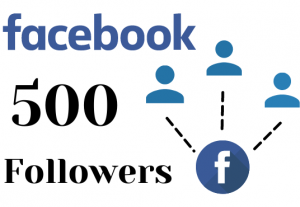 Get 500 facebook page followers – Non-drop – Fast delivery- HQ